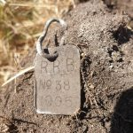 Rockingham Roads Board 1905 Dog Tag