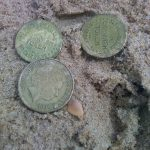 A few finds with the Simplex+ on the beach