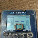 Встречается на пляже и в поле с Anfibio