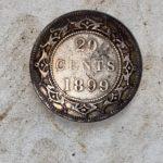 Gefunden A 1899 Neufundland 20 Cent - 2