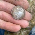 Gefunden A 1899 Neufundland 20 Cent - 3