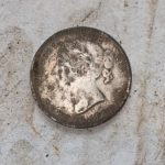 Gefunden A 1899 Neufundland 20 Cent - 4