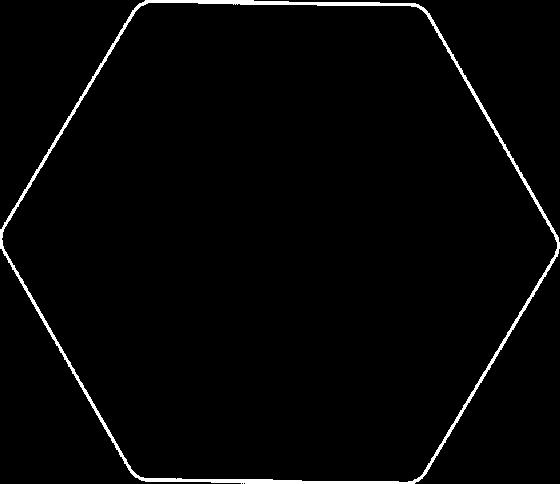 NMS Series Slider Altıgen